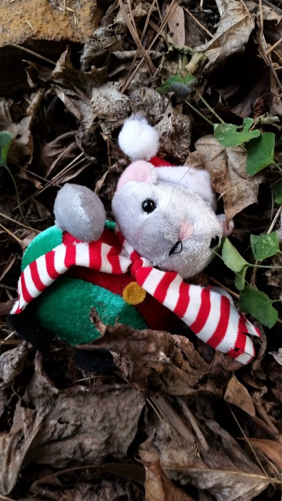 Poor mouse survived the kidnapping.