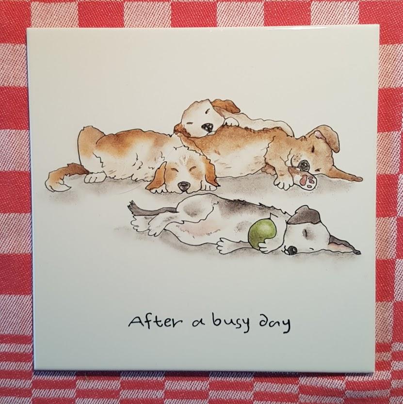 honden op tegel