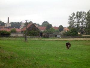 Im Havelland soll es Mitscherlich auch deshalb gefallen haben, weil ihn die Umgebung an Kutschlau erinnerte.