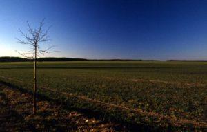 Ackerlandschaft am Berg von Brädikow