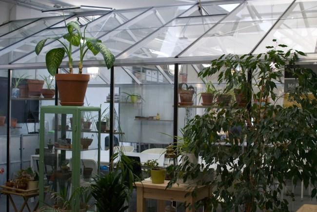 Plantenasiel vergaderkas