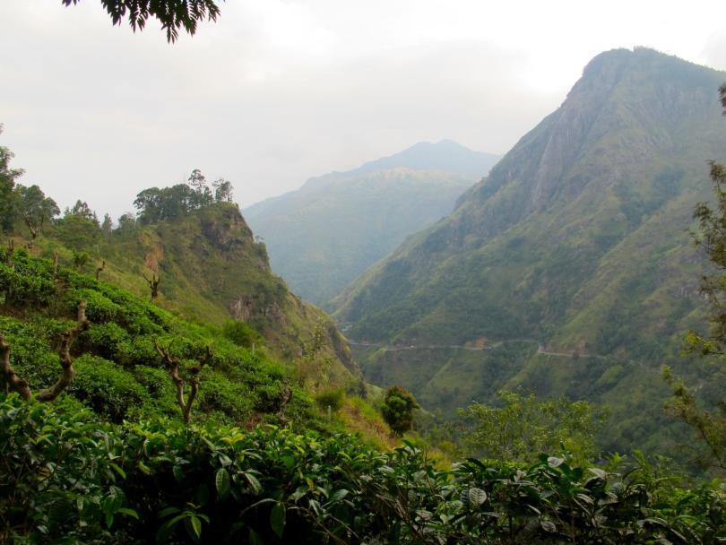 IMG_5056Ella in Sri Lanka