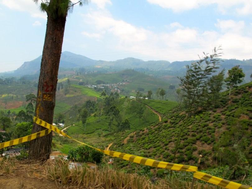 Liebster Award - Pauline Travels in Sri Lanka