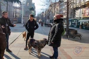 Skopje city walks