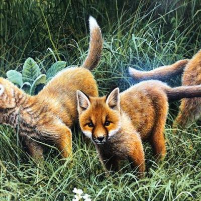 Playful Fox Cubs Original Artwork Paul James