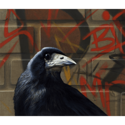 Mr B 2 Crow Paul James Artwork