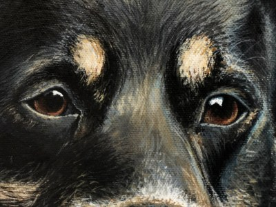 Old Shep Dog Paul James Original Artwork