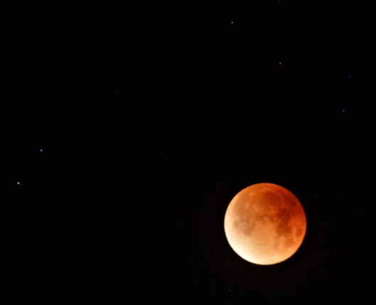 Blood-red Moon