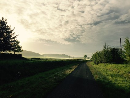Avenue Verte at dawn