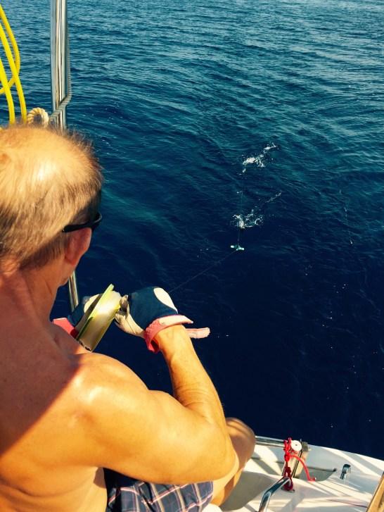 Hand line fishing of Sicily