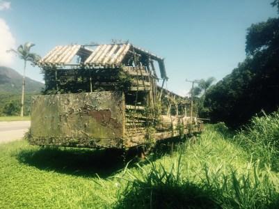Nature reclaiming truck, BR-277, Paranagua to Curitiba, Brazil