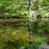 River Teign, Devon, landscapes and nature photographer photography herefordshire 4002