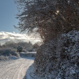 Snowy Lane, Devon, landscapes and nature photographer photography herefordshire 8114