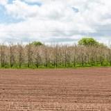 Townend Hop Farm, Herefordshire farming agriculture landscape photographer photography 7988
