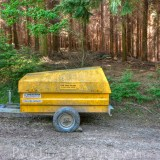 Forestry, fine art photography photographer herefordshire 4197