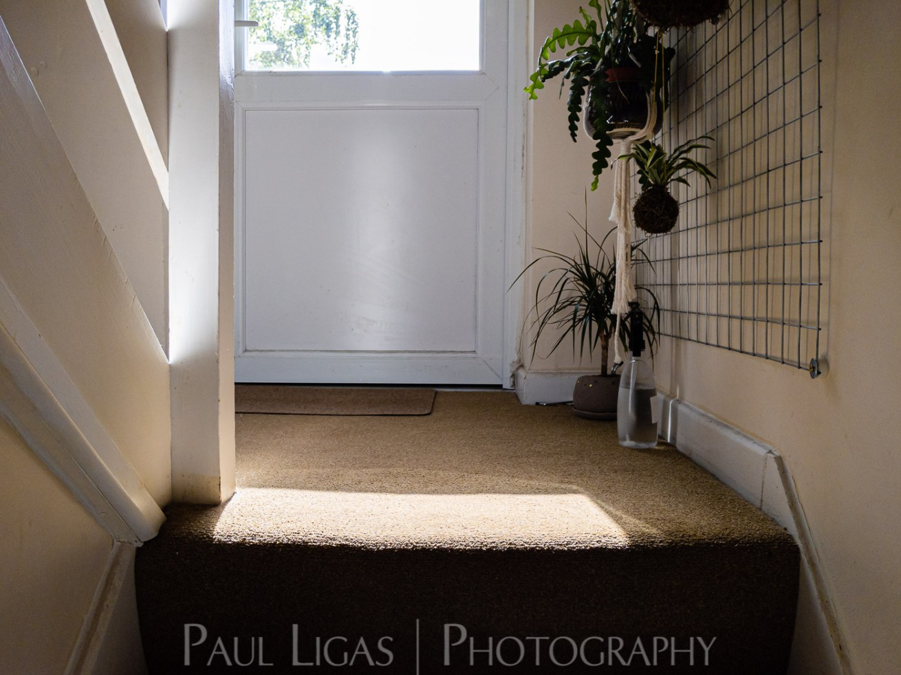 photos from inside a lockdown part 10 paul ligas photography hereford ledbury-160432