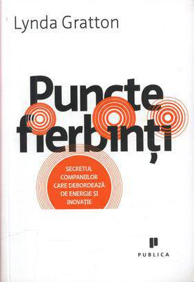 puncte-fierbinti_1_produs