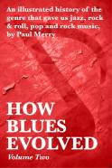 How Blues Evolved Kindle Cover 9