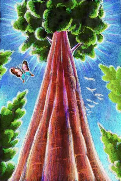 20 sec reading: the giant tree