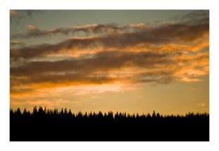 trretop sunset