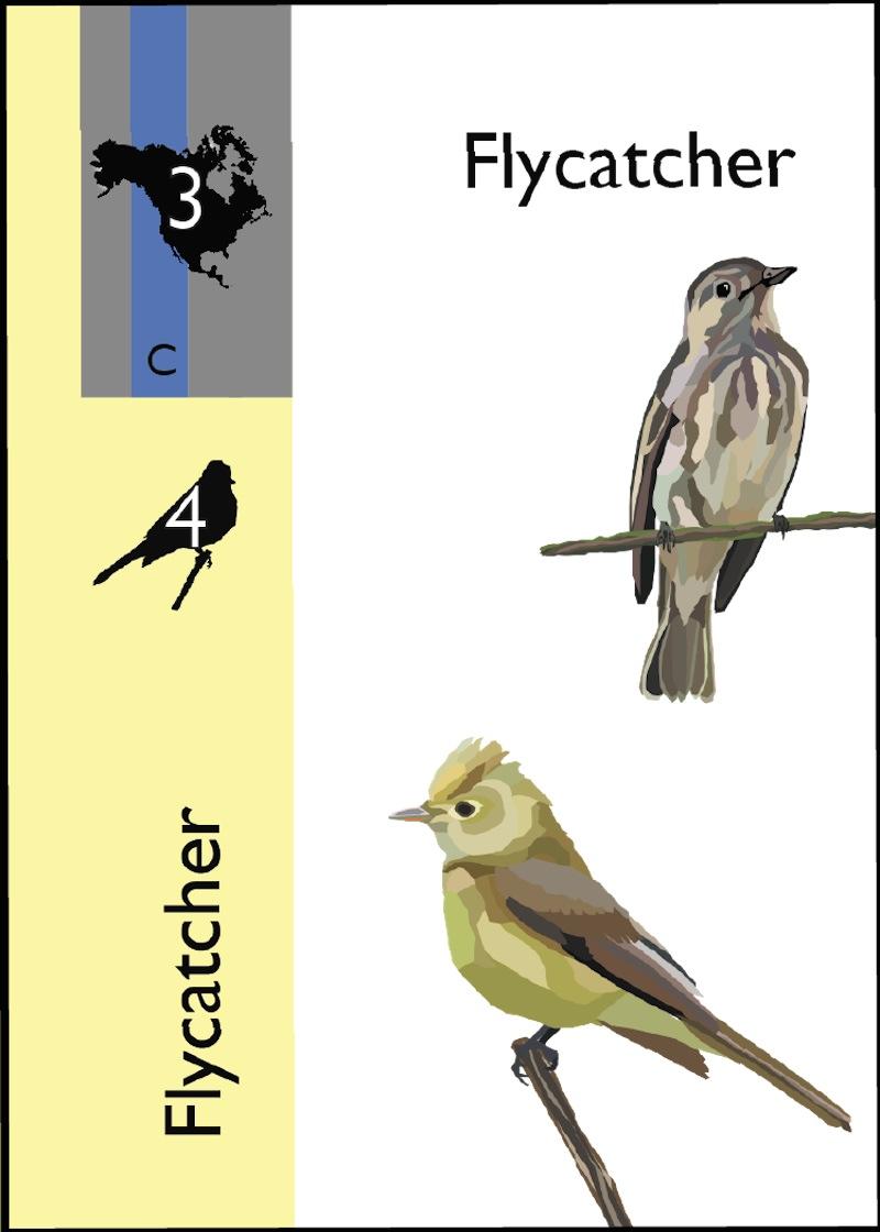 Flocks & Flyways card 02