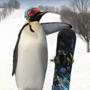 Penguin90