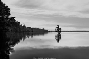 Early Morning on Reelfoot Lake
