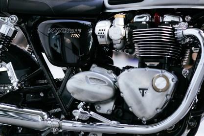 2016 Triumph T120 and T120 Black - 16