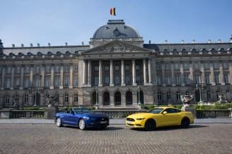 Mustangs Around the World - Belgium