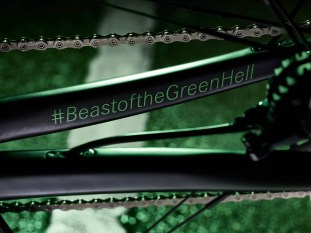 Rotwild R.S2 Limited Edition Beast of the Green Hell 8
