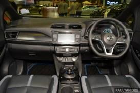 Nissan Leaf SG 14-BM