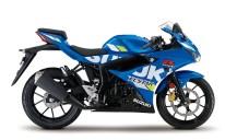 2020 Suzuki GSX-R125 - 12