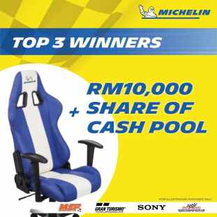 Michelin eR image2
