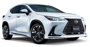 2022 Lexus NX Modellista parts-1