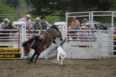 Cowboy falls from bucking bronco