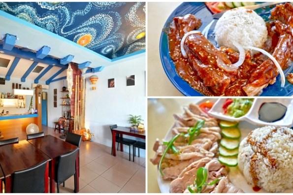 台東市區聚餐 迷宮餐廳多國料理 海南雞飯+豬肋排~台東隱藏版美食,用美食環遊世界