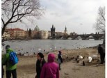 Children play by the banks of the Vltava River. The Charles Bridge can be seen in the background.
