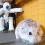 Alucina con las aventuras de Major Hamster
