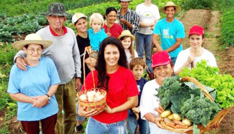 MPF recomenda que municípios da PB comprem produtos da agricultura familiar para merenda escolar