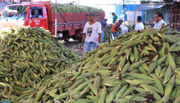 Pesquisa aponta que há uma diferença de R$ 15 no preço da mão de milho na Capital