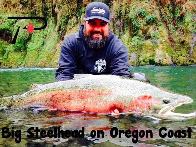 Biggest Steelhead Oregon