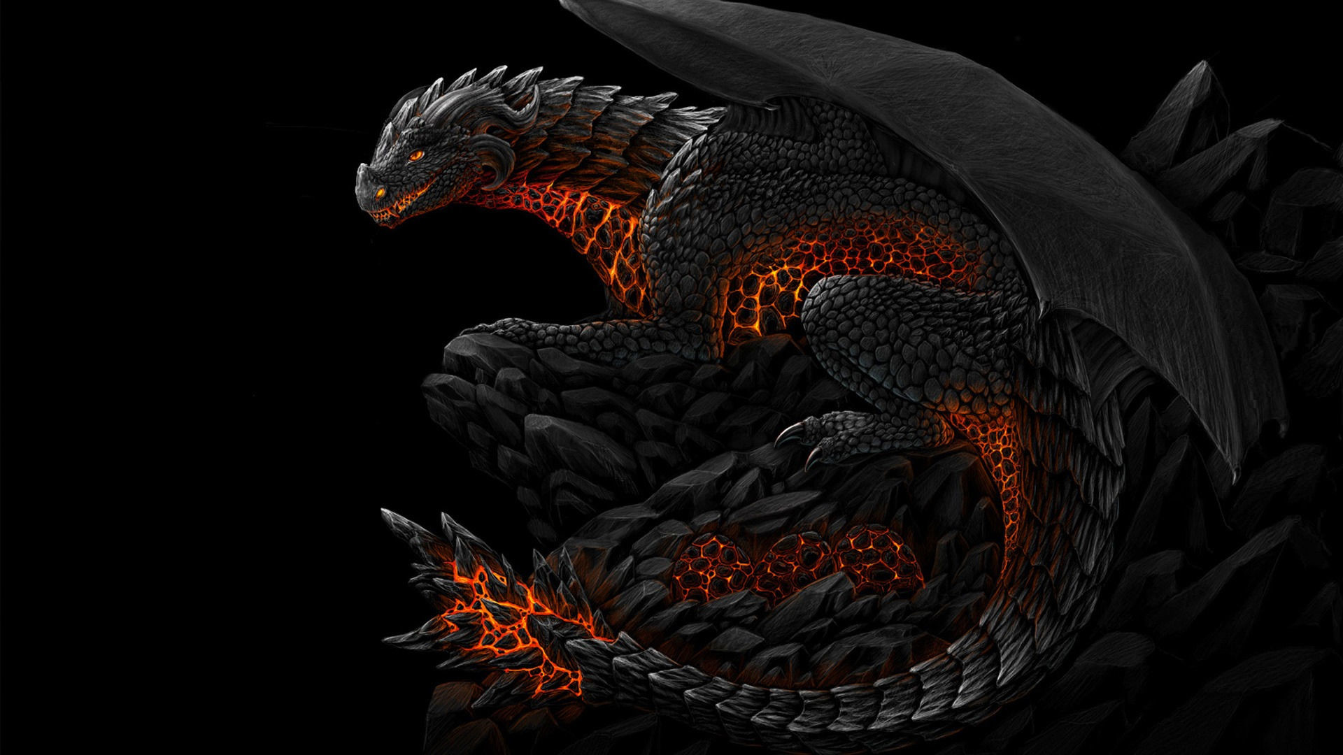 3D Dragon Wallpapers  71  background pictures  1920x1080 Dragon S 3d Wallpapers For Iphone Is Cool Wallpapers