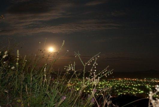 Ночное фото - трава на склоне Машука