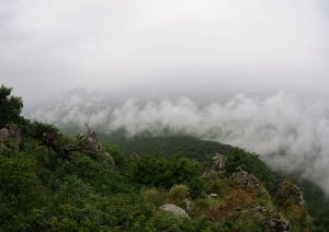Туманное дождливое утро на Бештау