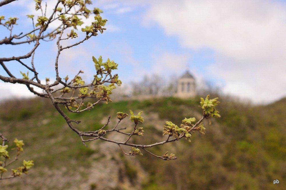 Весна идёт по Пятигорску