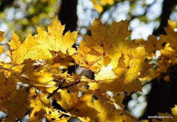 autumn-pyatigorsk-23