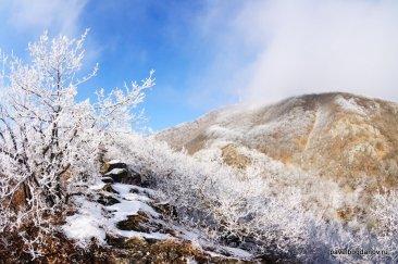 winter-pyatigorsk-49