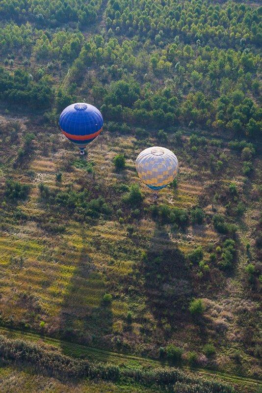 Посадка воздушных шаров