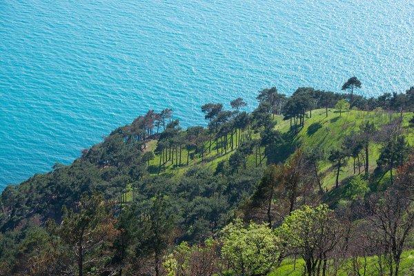 Вид на побережье Джанхота