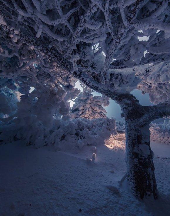 Снежная вершина Машука